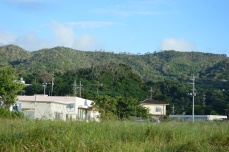 A typical Okinawan residence and the surrounding landscape (lots of greenery!)